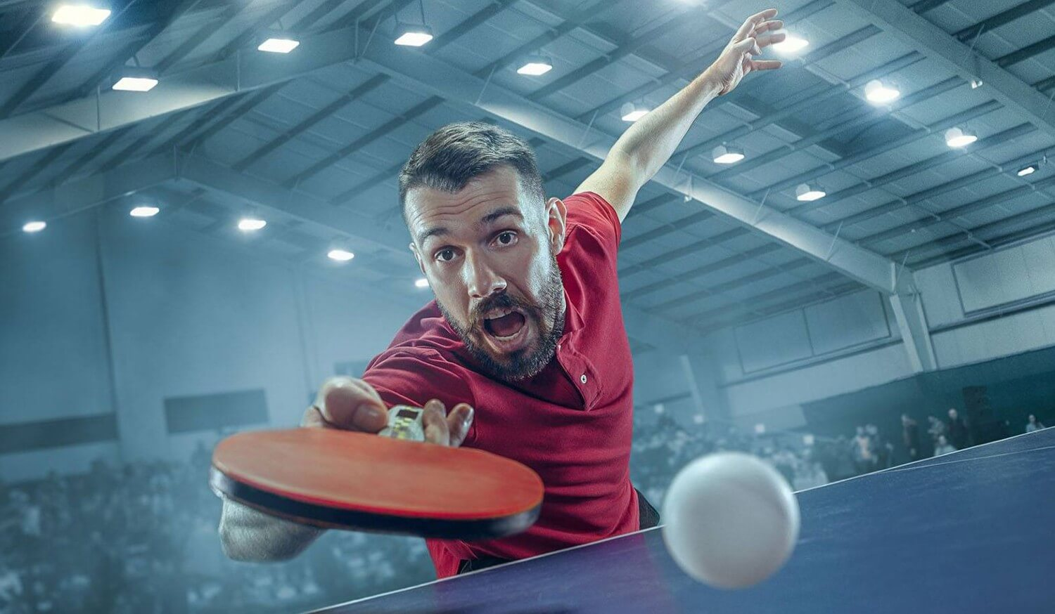 Different Grips In Table Tennis