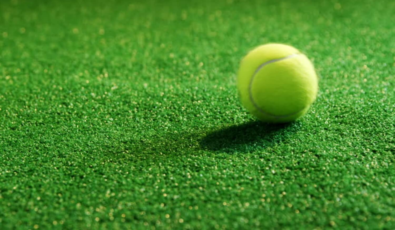 Tennis Grass Surface